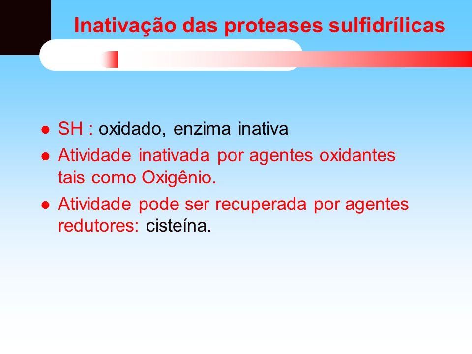 Inativação das proteases sulfidrílicas