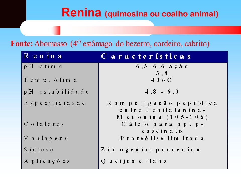 Renina (quimosina ou coalho animal)