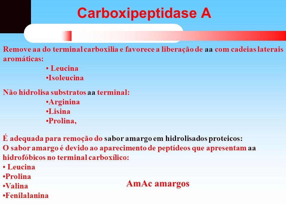 Carboxipeptidase A AmAc amargos