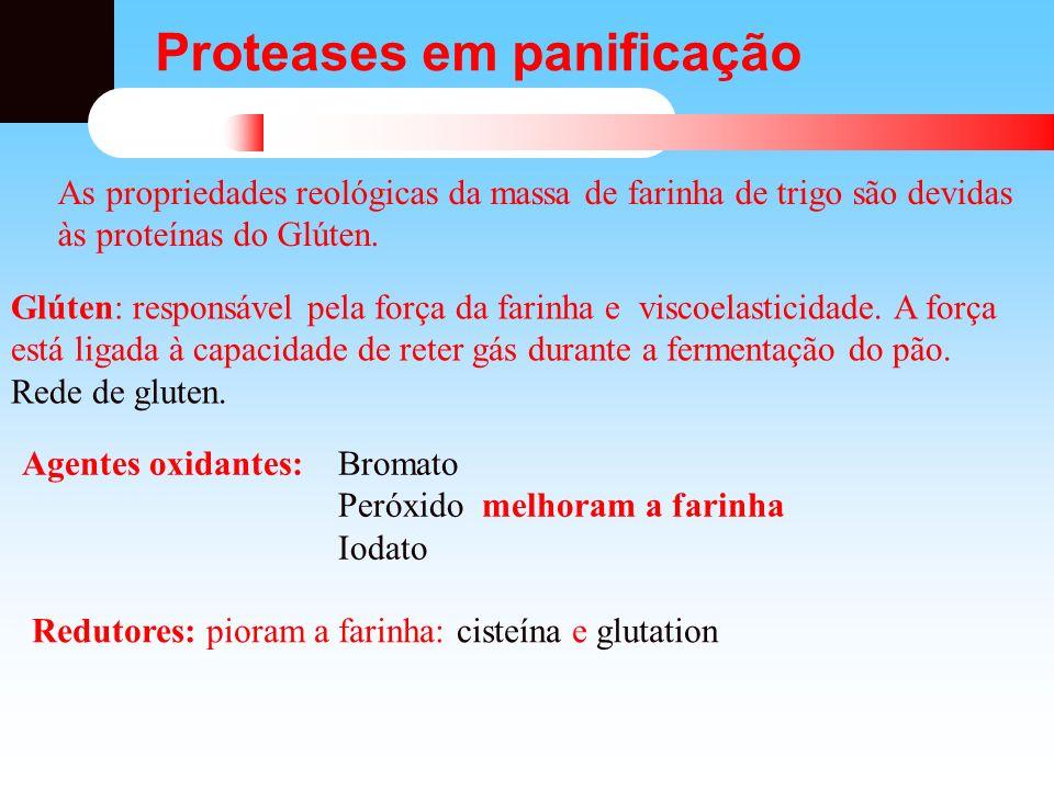 Proteases em panificação