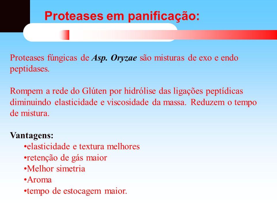 Proteases em panificação: