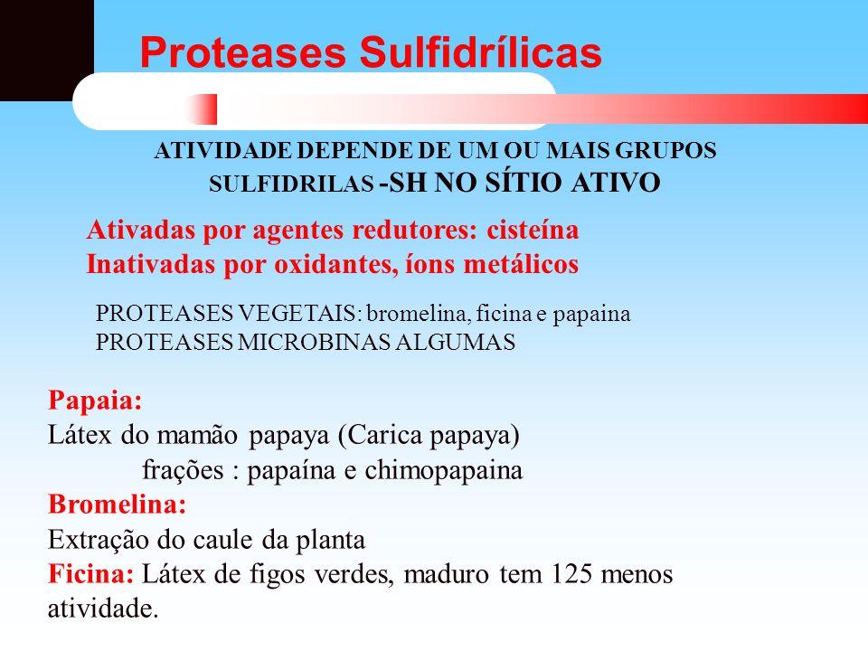 Proteases Sulfidrílicas