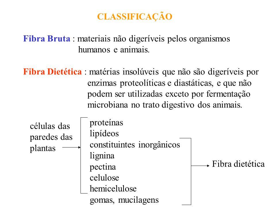 CLASSIFICAÇÃO Fibra Bruta : materiais não digeríveis pelos organismos. humanos e animais.