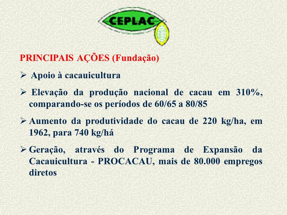 PRINCIPAIS AÇÕES (Fundação)