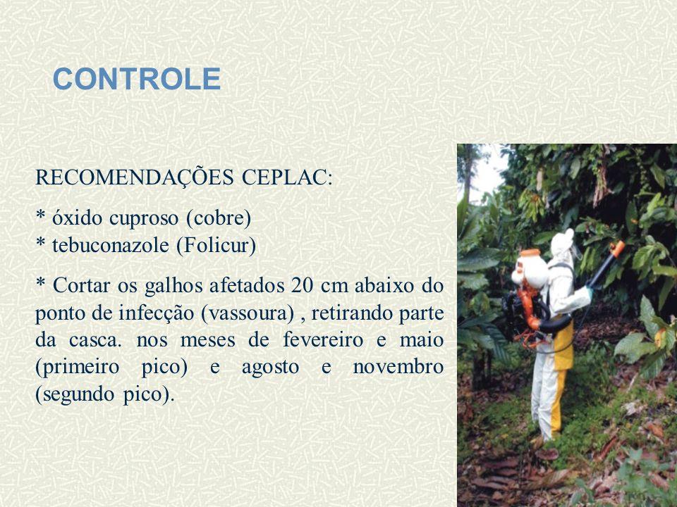 CONTROLE RECOMENDAÇÕES CEPLAC: