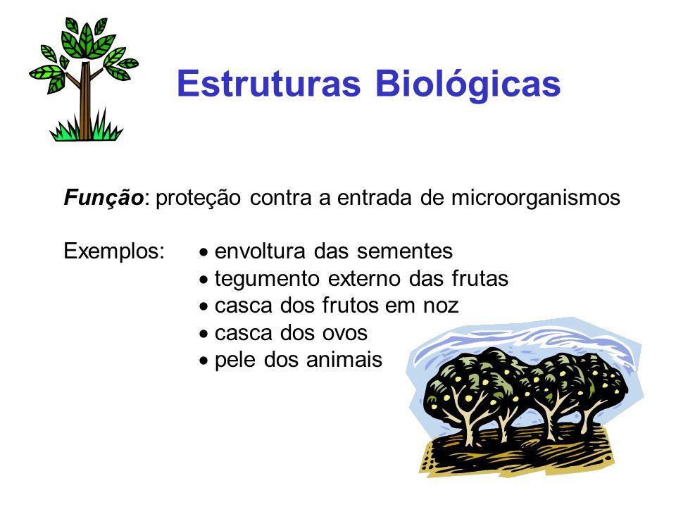 Estruturas Biológicas