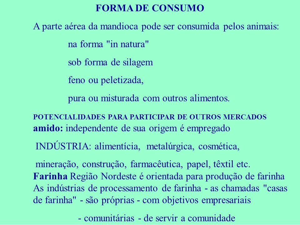 FORMA DE CONSUMO A parte aérea da mandioca pode ser consumida pelos animais: na forma in natura sob forma de silagem.