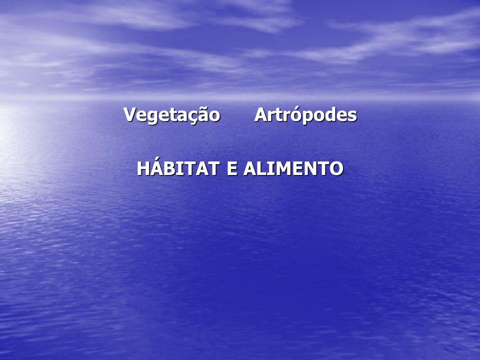 Vegetação Artrópodes HÁBITAT E ALIMENTO