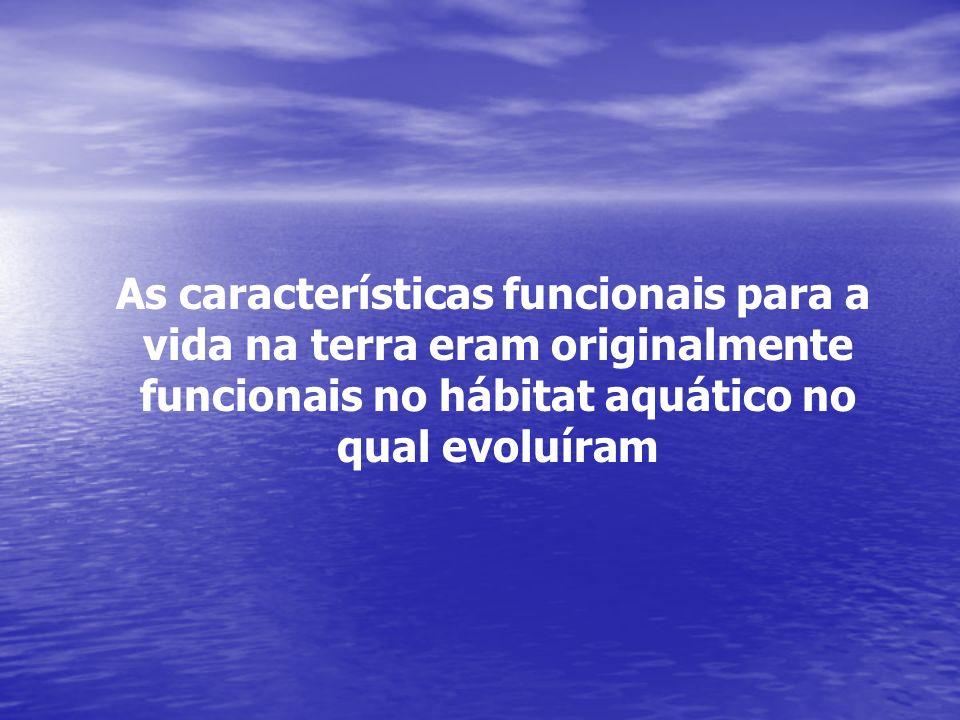 As características funcionais para a vida na terra eram originalmente funcionais no hábitat aquático no qual evoluíram