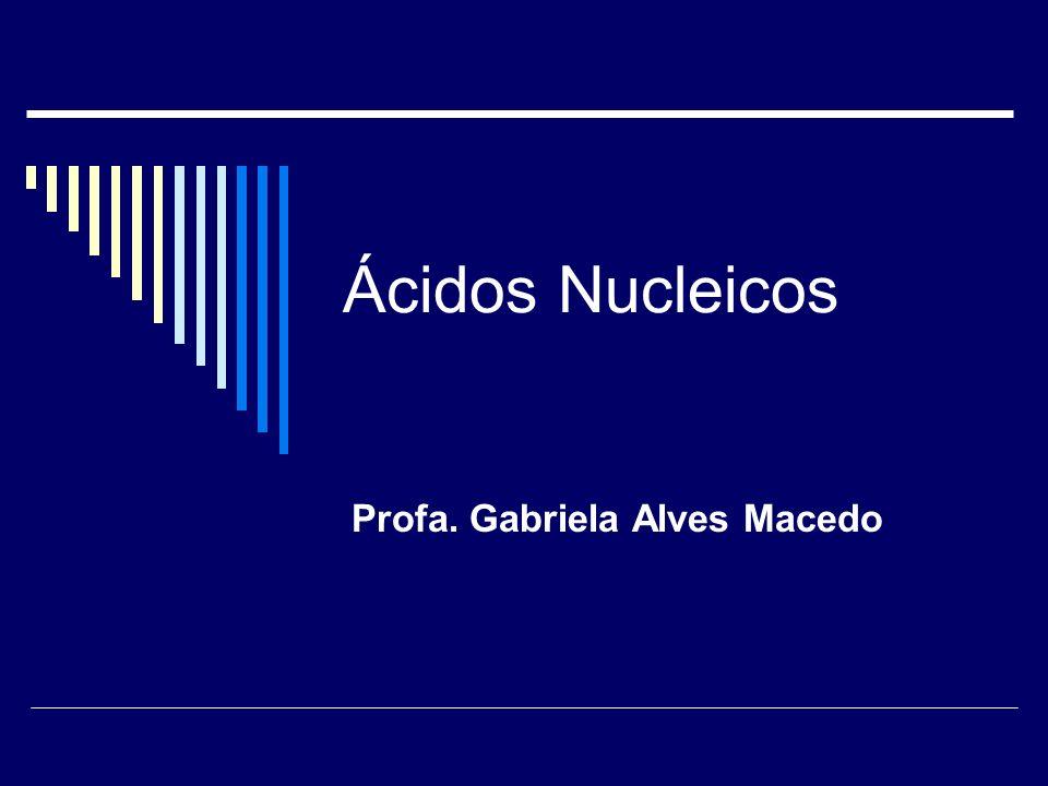Profa. Gabriela Alves Macedo