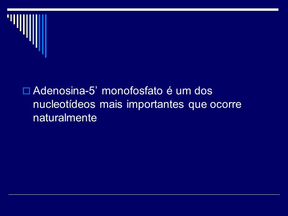 Adenosina-5' monofosfato é um dos nucleotídeos mais importantes que ocorre naturalmente