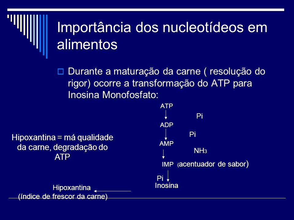 Importância dos nucleotídeos em alimentos