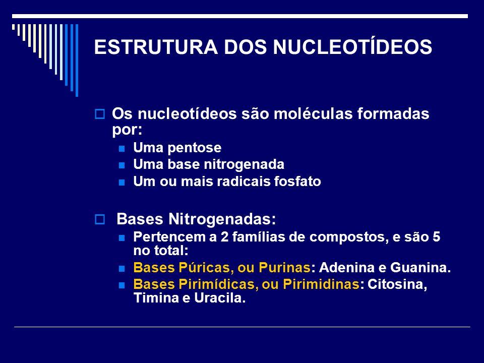 ESTRUTURA DOS NUCLEOTÍDEOS