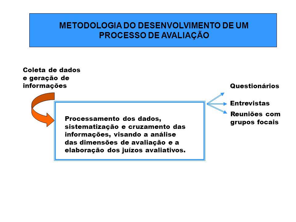 METODOLOGIA DO DESENVOLVIMENTO DE UM PROCESSO DE AVALIAÇÃO