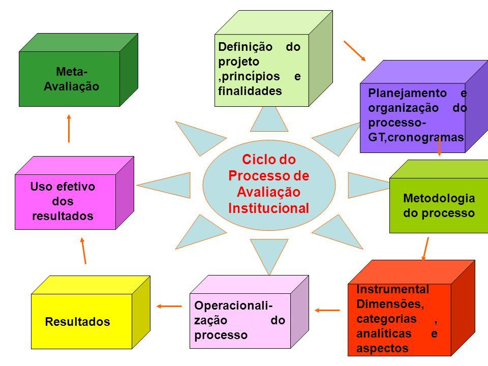 Ciclo do Processo de Avaliação Institucional