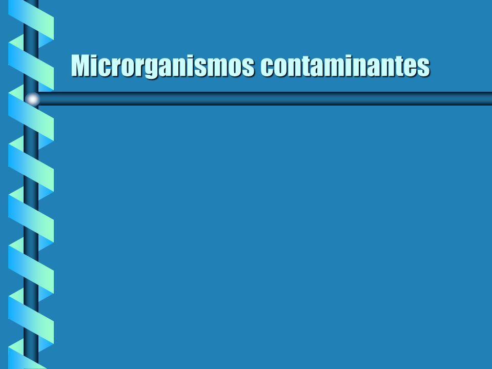 Microrganismos contaminantes