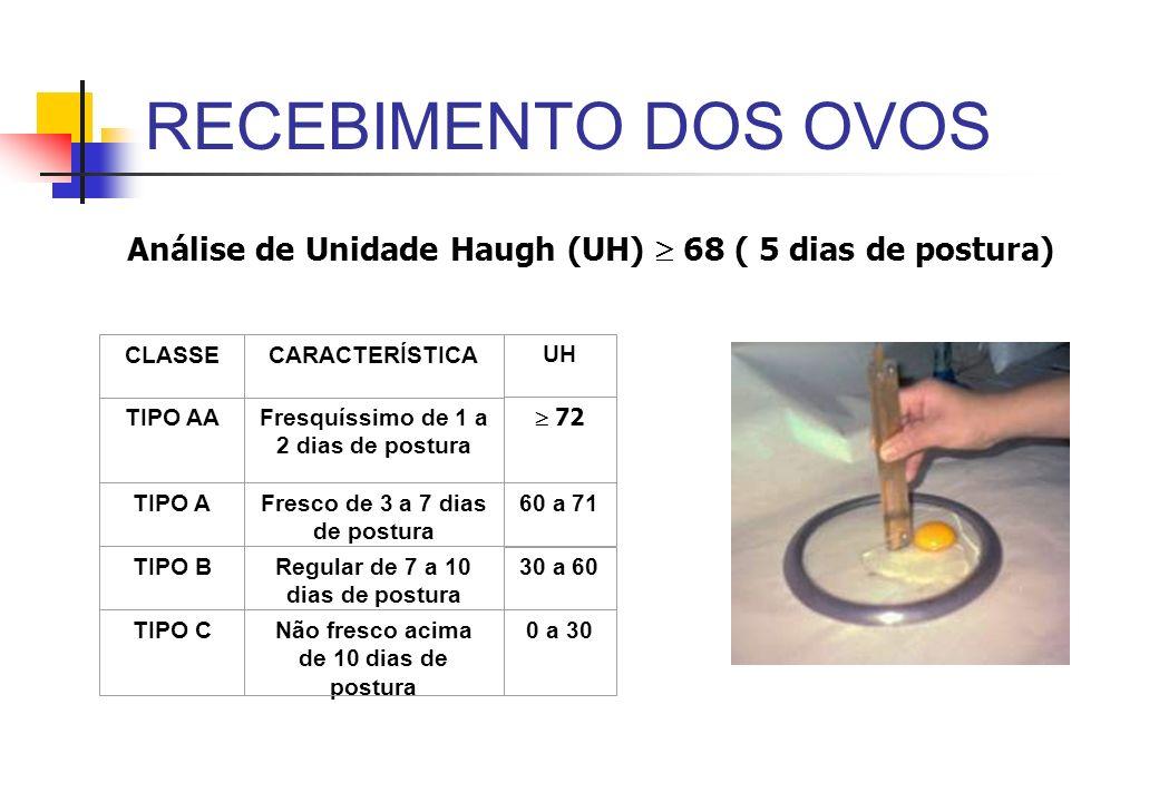 RECEBIMENTO DOS OVOS Análise de Unidade Haugh (UH)  68 ( 5 dias de postura) CLASSE. CARACTERÍSTICA.
