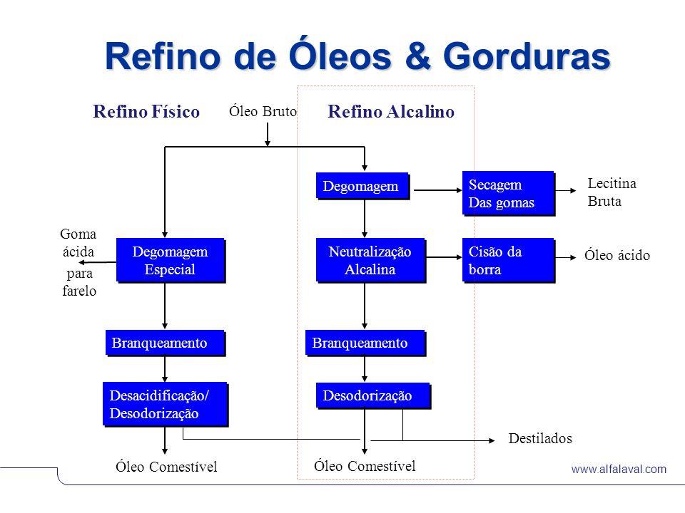 Refino de Óleos & Gorduras