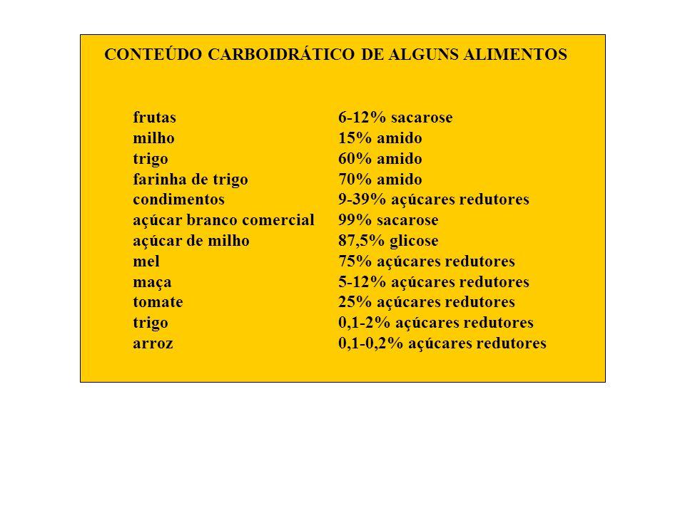 CONTEÚDO CARBOIDRÁTICO DE ALGUNS ALIMENTOS