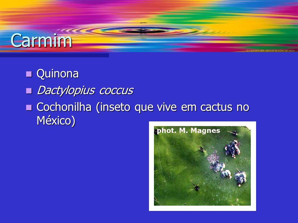 Carmim Quinona Dactylopius coccus