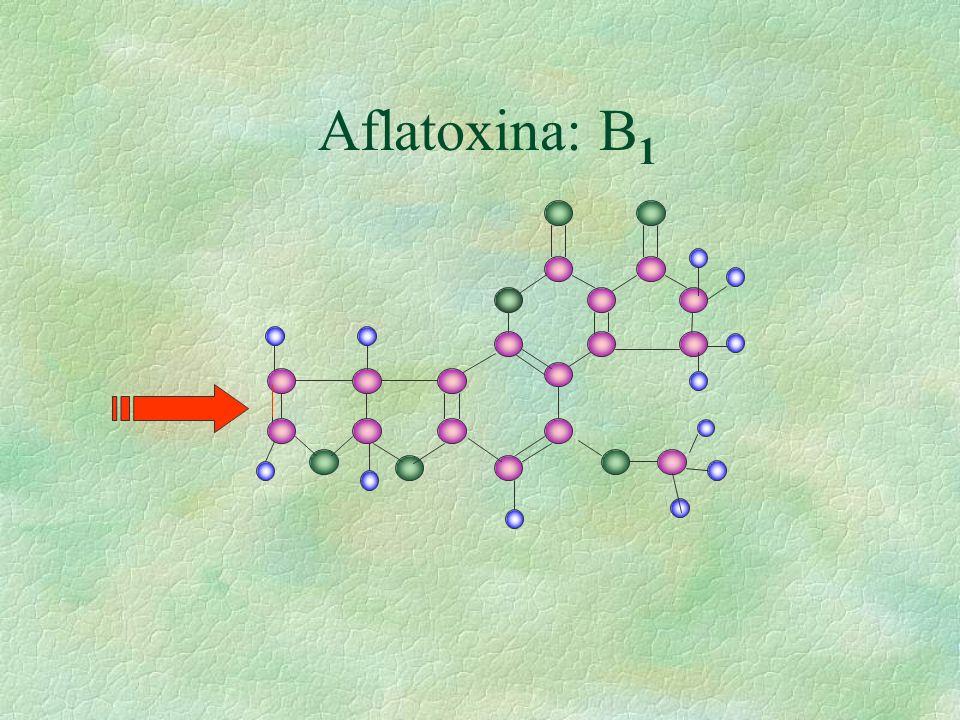 Aflatoxina: B1