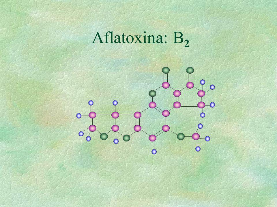 Aflatoxina: B2