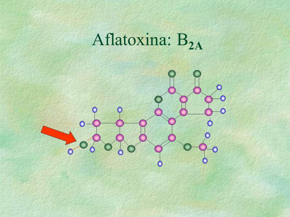 Aflatoxina: B2A
