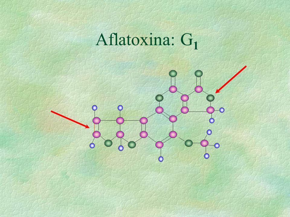 Aflatoxina: G1