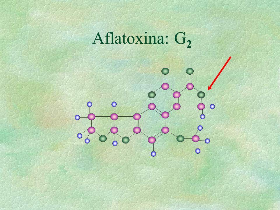 Aflatoxina: G2