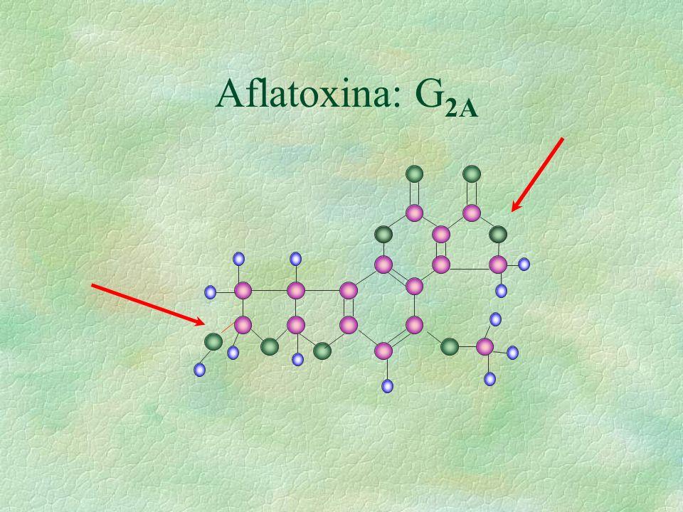 Aflatoxina: G2A