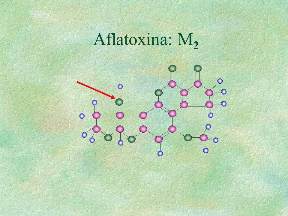 Aflatoxina: M2