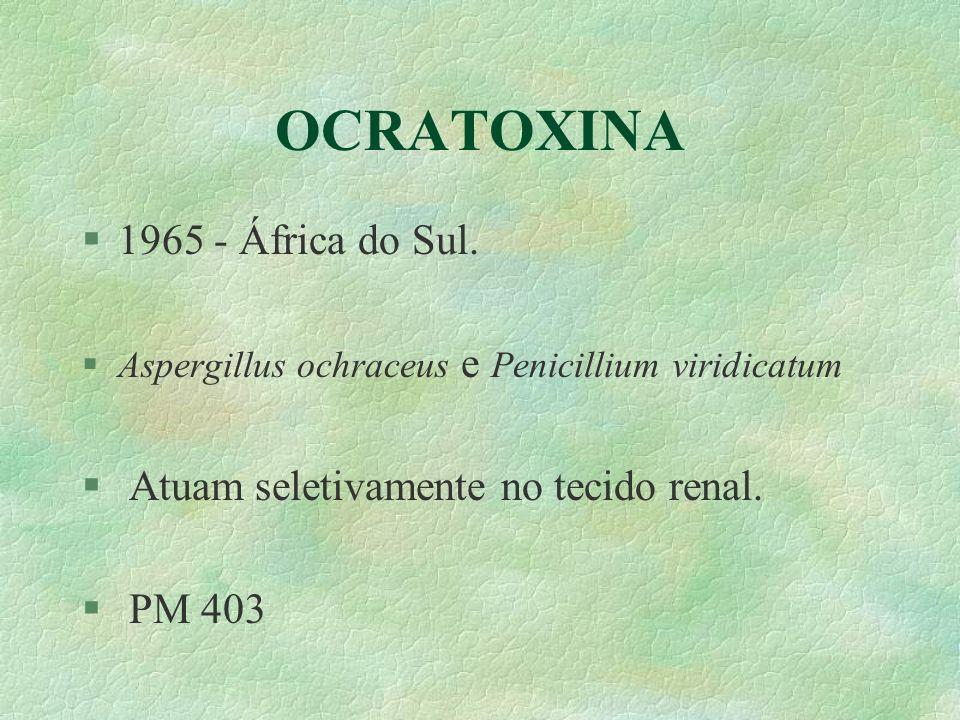 OCRATOXINA 1965 - África do Sul. Atuam seletivamente no tecido renal.