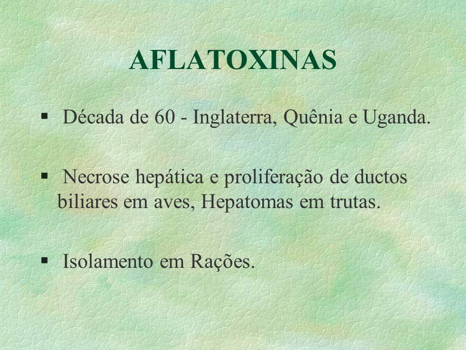 AFLATOXINAS Década de 60 - Inglaterra, Quênia e Uganda.