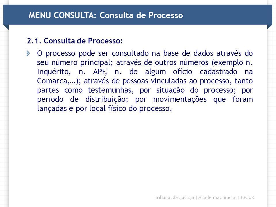 MENU CONSULTA: Consulta de Processo