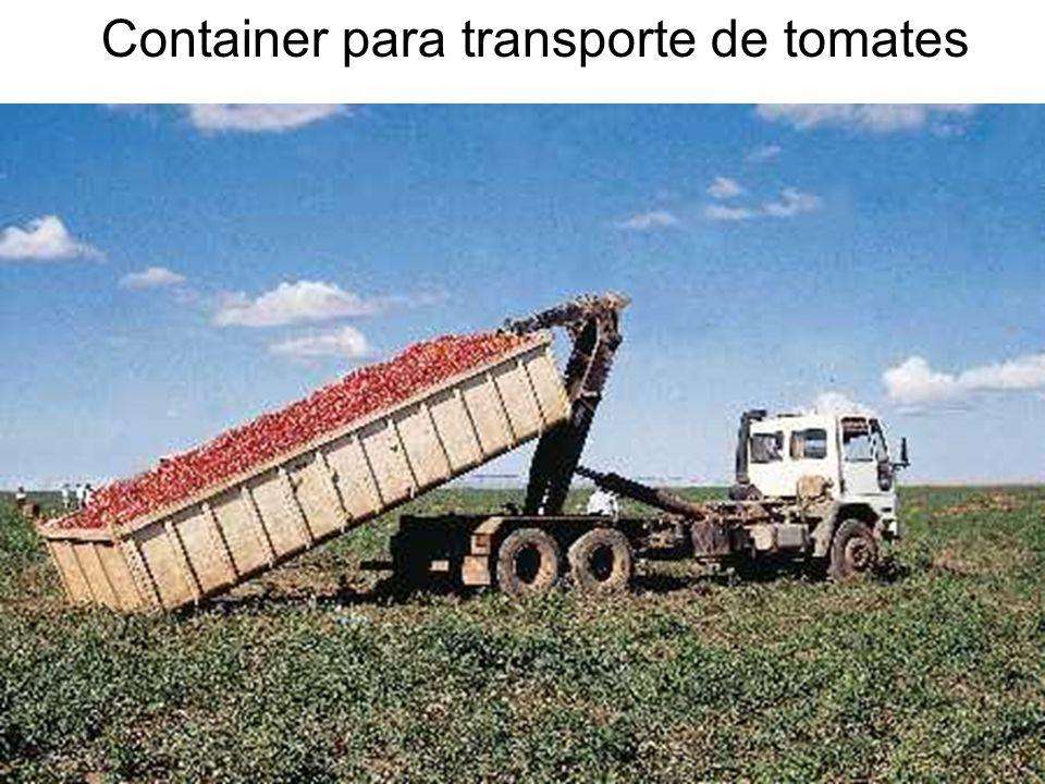 Container para transporte de tomates