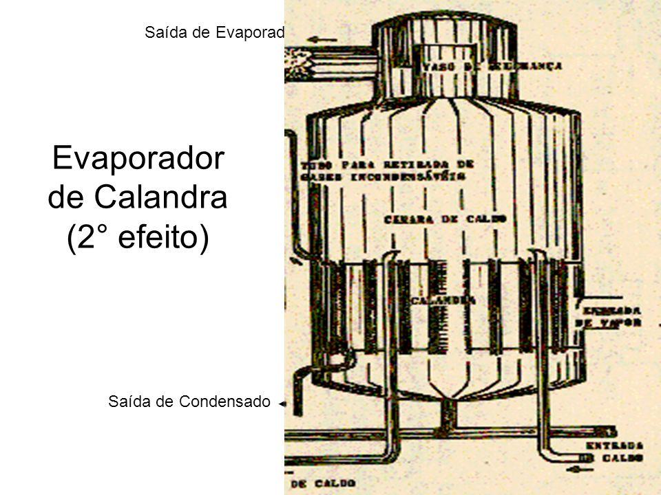 Evaporador de Calandra (2° efeito)