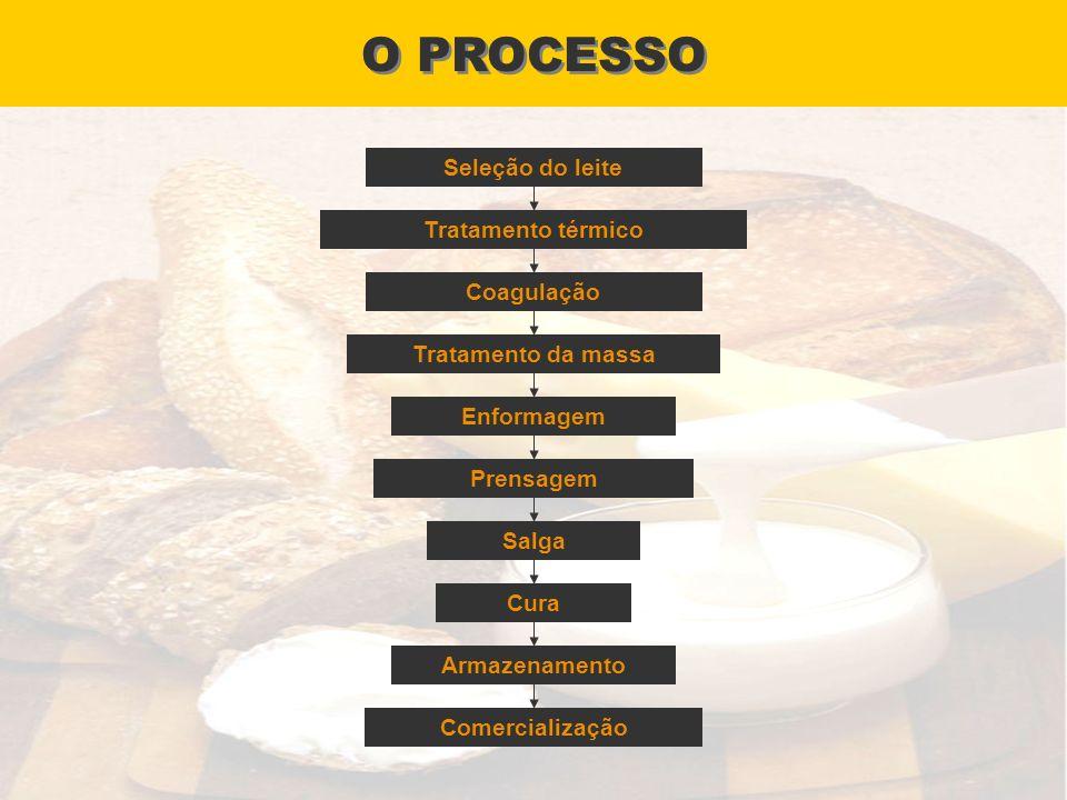 O PROCESSO Seleção do leite Tratamento térmico Coagulação