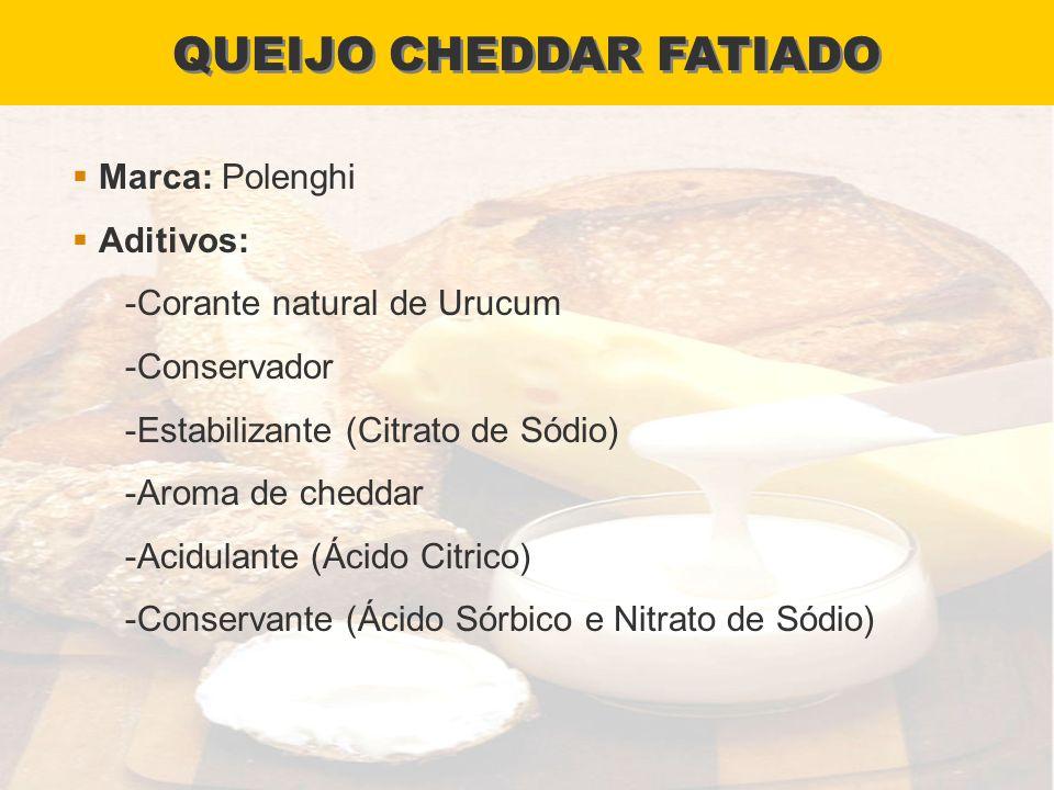 QUEIJO CHEDDAR FATIADO
