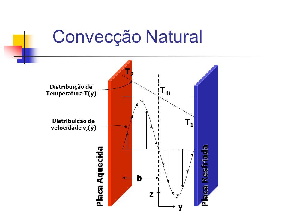 Convecção Natural T2 Tm T1 Placa Resfriada Placa Aquecida b z y