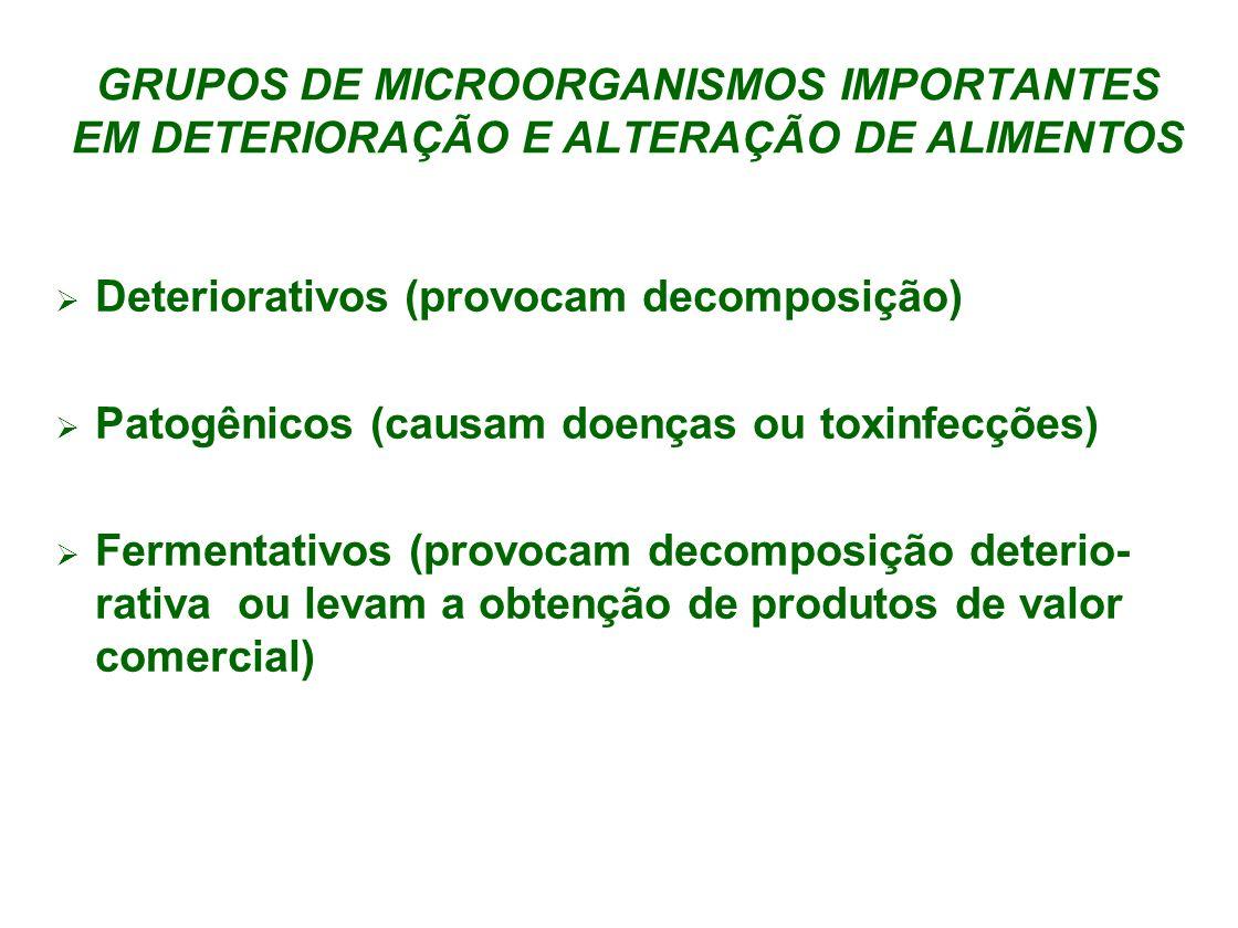 GRUPOS DE MICROORGANISMOS IMPORTANTES EM DETERIORAÇÃO E ALTERAÇÃO DE ALIMENTOS