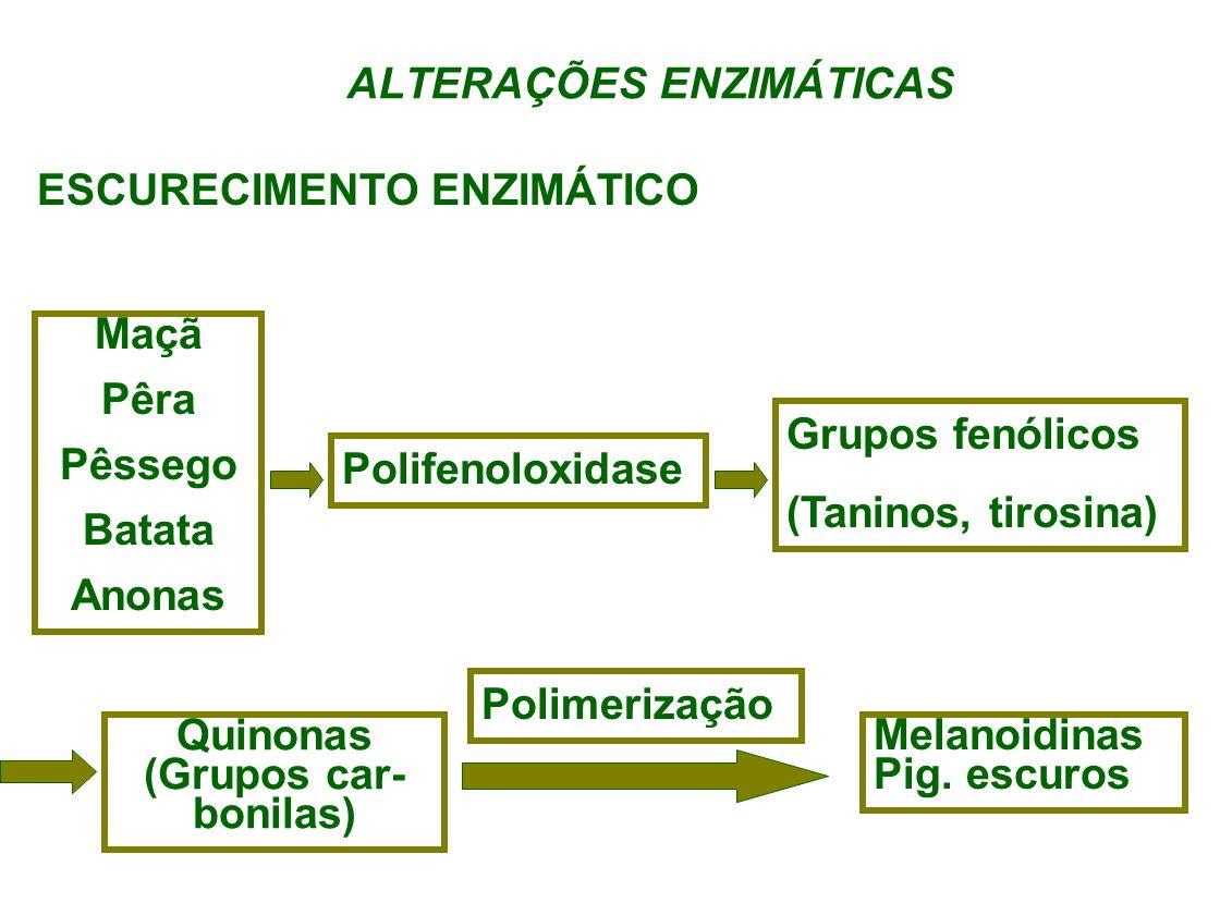 ALTERAÇÕES ENZIMÁTICAS