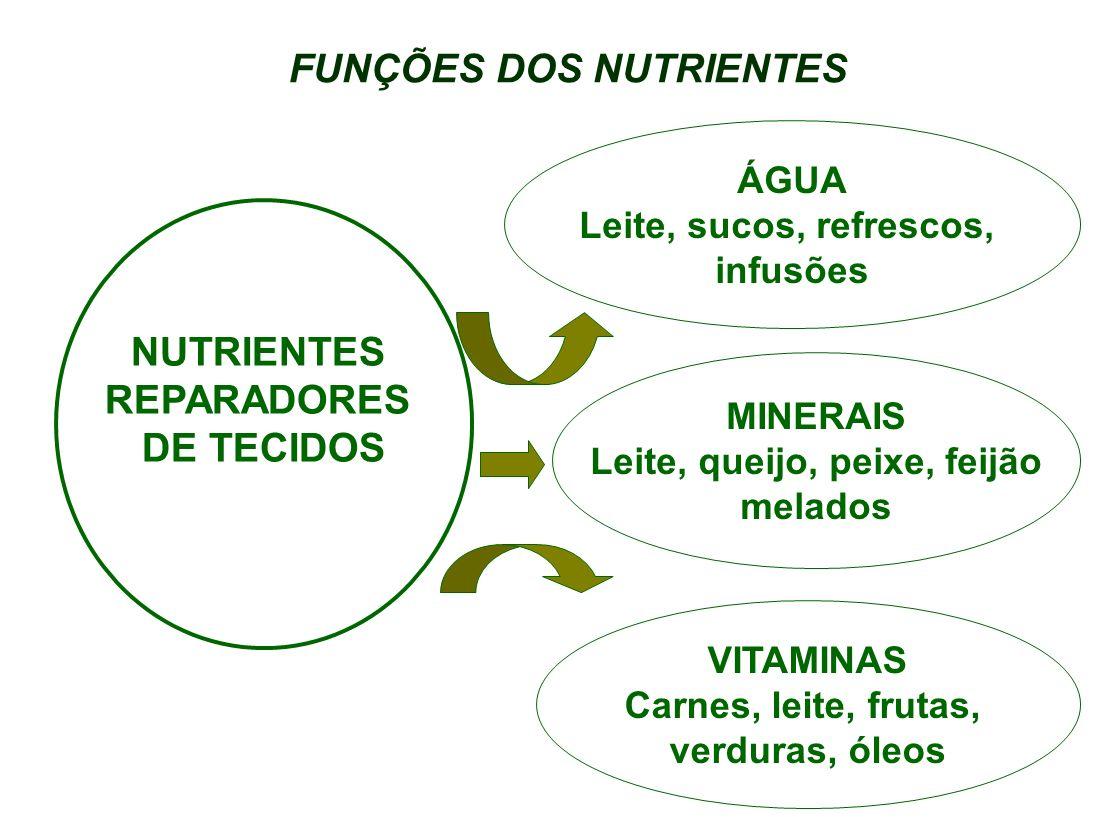 FUNÇÕES DOS NUTRIENTES Leite, queijo, peixe, feijão