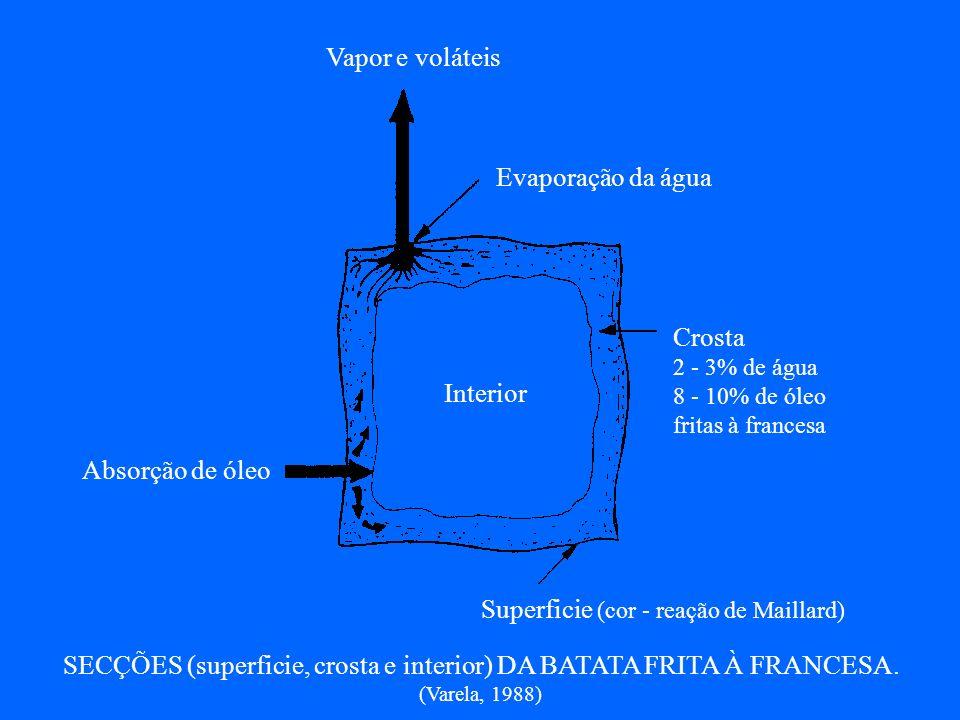 SECÇÕES (superficie, crosta e interior) DA BATATA FRITA À FRANCESA.
