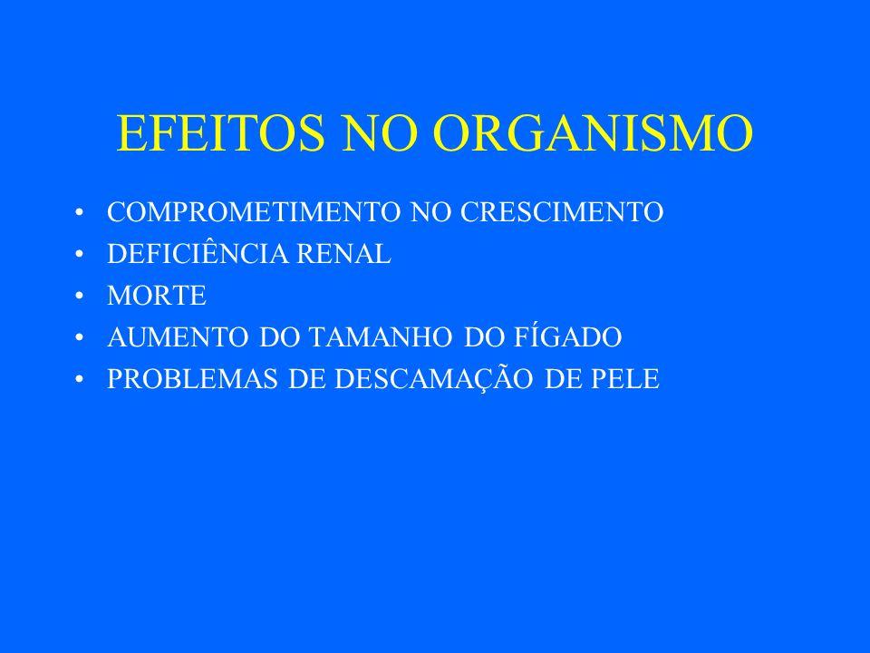 EFEITOS NO ORGANISMO COMPROMETIMENTO NO CRESCIMENTO DEFICIÊNCIA RENAL