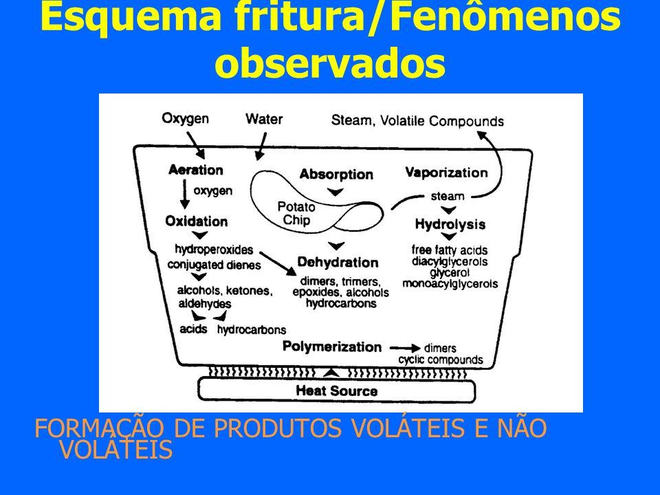 Esquema fritura/Fenômenos observados