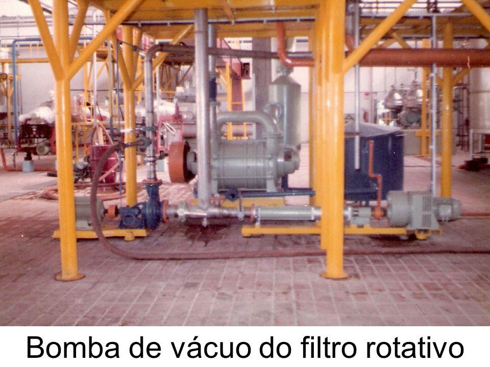 Bomba de vácuo do filtro rotativo