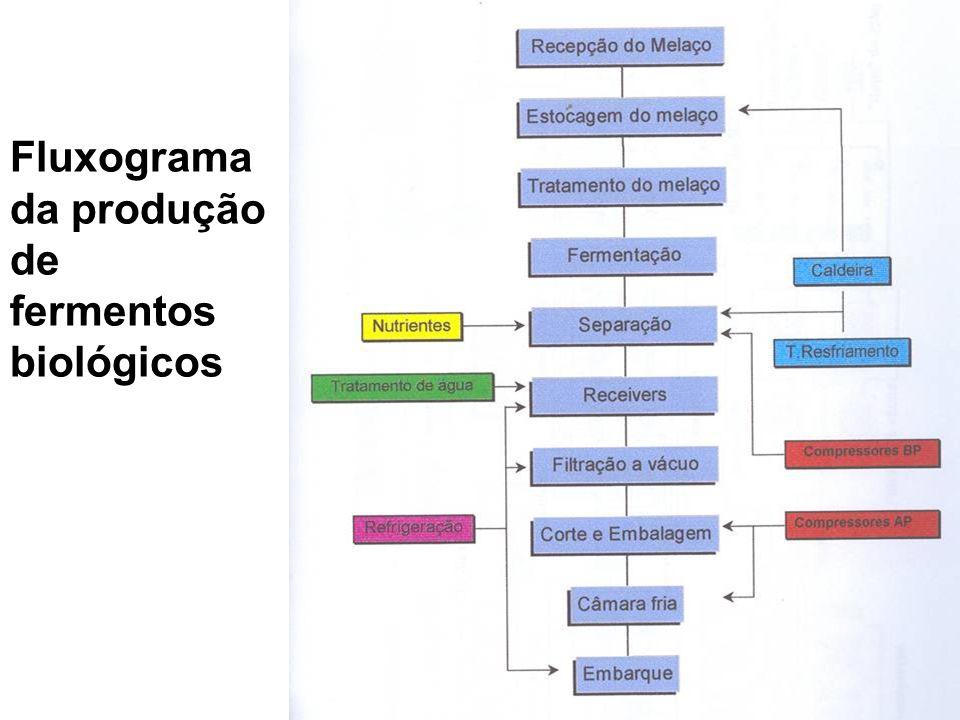 Fluxograma da produção de fermentos biológicos