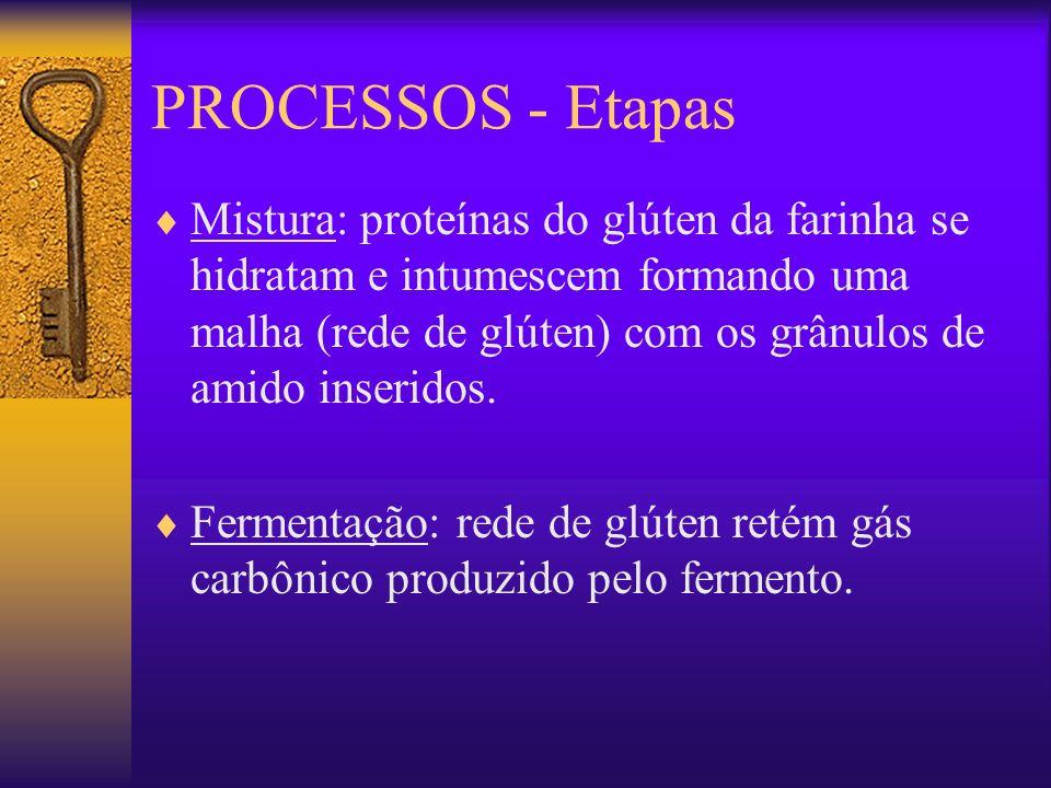PROCESSOS - Etapas