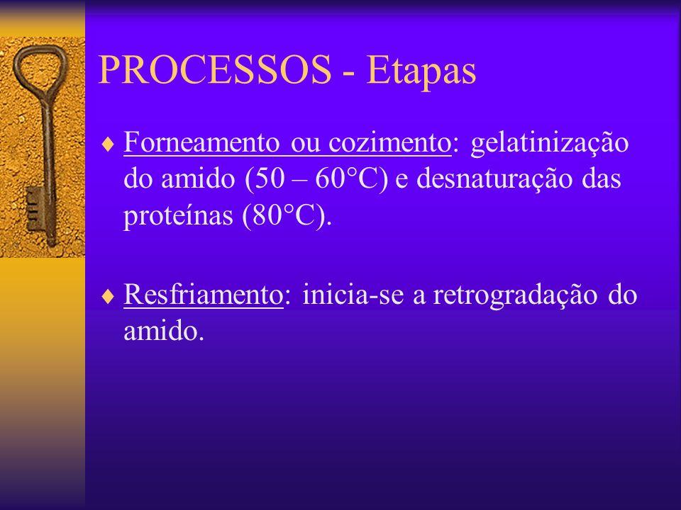 PROCESSOS - EtapasForneamento ou cozimento: gelatinização do amido (50 – 60°C) e desnaturação das proteínas (80°C).