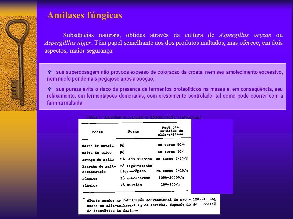 Amilases fúngicas